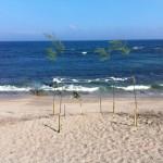和田浦海水浴場海開き