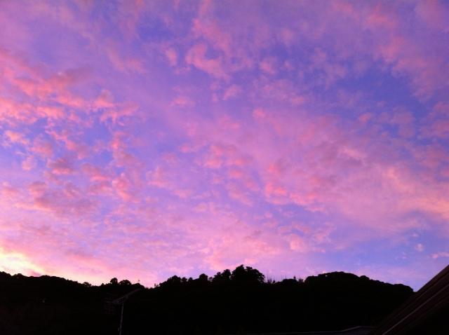 10月29日 庭で見た夕空